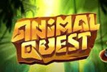 Animal Quest