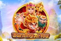 Burning Xi You