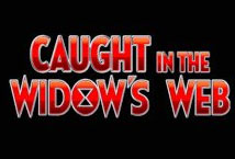Caught in the Widows Web