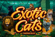 Exotic Cats Slot - Review, Demo Play, Payout, Free Spins & Bonuses