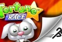 Fortune Race
