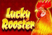 Lucky Rooster (High 5)