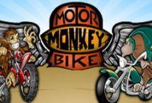 Motorbike Monkey