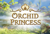 Orchid Princess