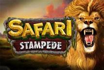 Safari Stampede