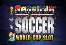 Sensible Soccer World Cup