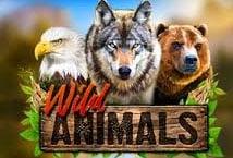Wild Animals (Red Rake)