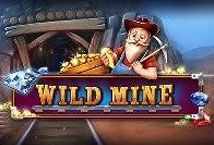 Wild Mine (BB Games)