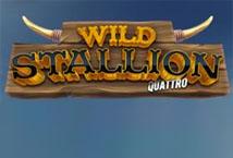 Wild Stallion Quatro