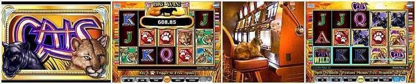 sky kings casino Casino