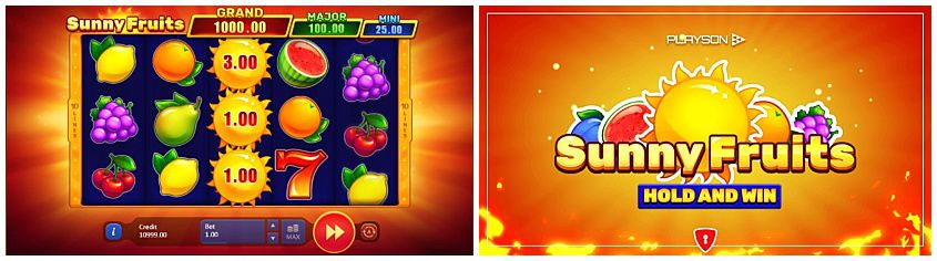 Sunny Fruits Hold And Win Slot Machine