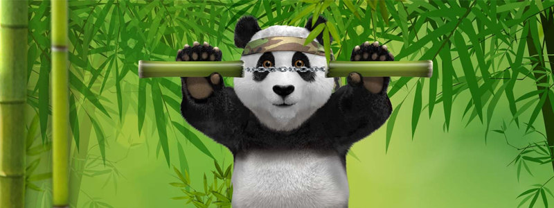 Bamboo Bonuses Every Week at Royal Panda