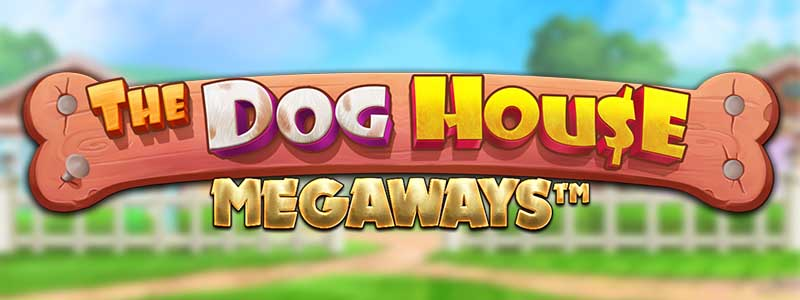 The Dog House Megaways Slot - New from Pragmatic Play