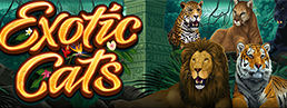 We've Got A Good Feline About Microgaming's New Exotic Cats Slot